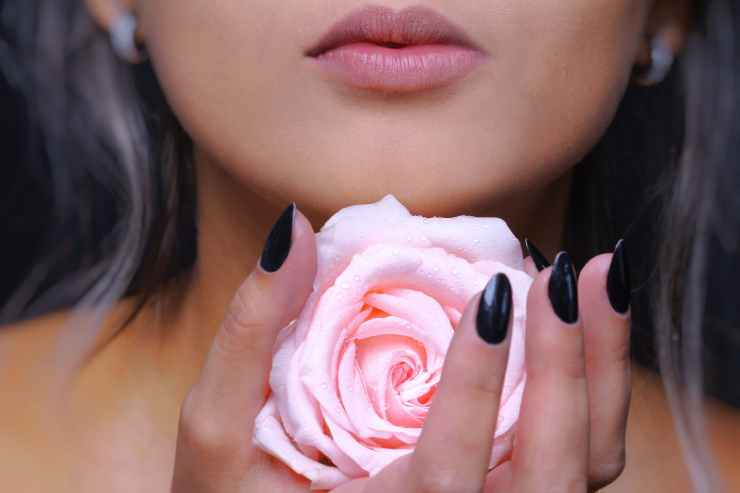woman holding pink rose flower